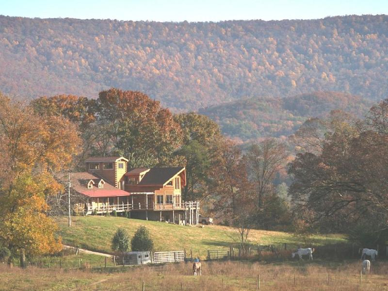 Perfect for Family Reunions or Retreats. - Image 1 - Chattanooga - rentals