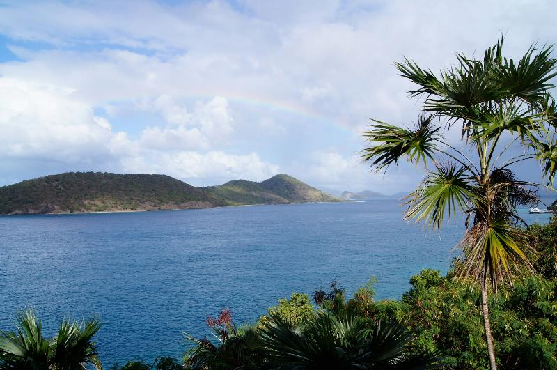 Beautiful Waterfront Villa in St. Thomas - Villa Pacifica - Image 1 - Red Hook - rentals