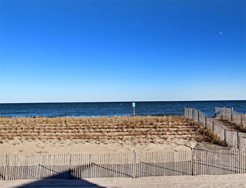 1106 South Ocean Drive - Image 1 - South Bethany Beach - rentals