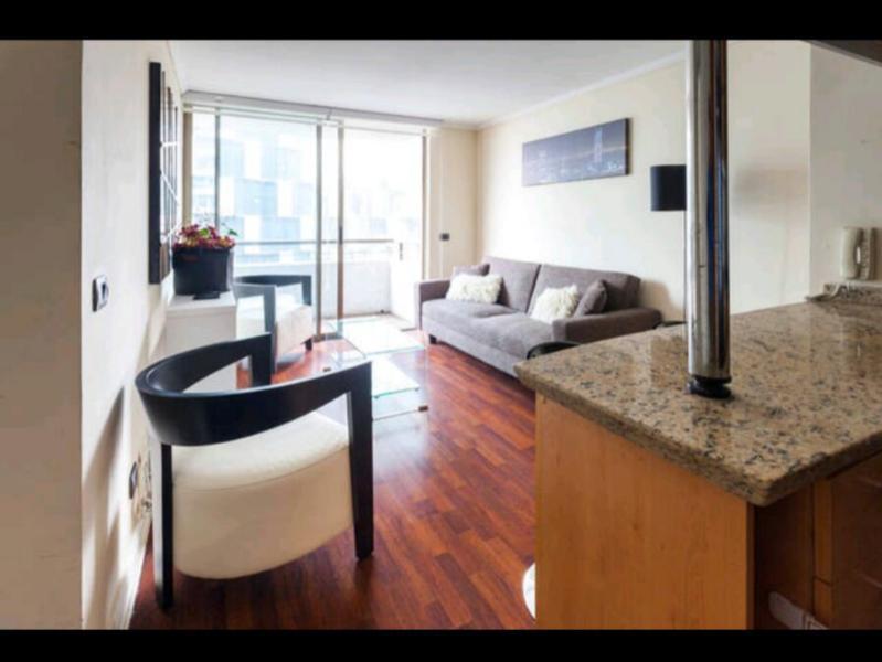 Sleek 2 Bedroom Apartment in Providencia - Image 1 - Santiago - rentals