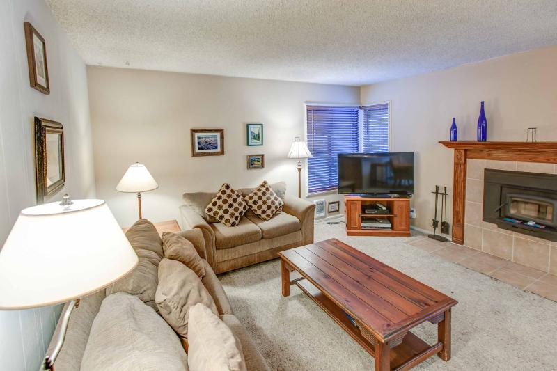 Fireside at Village #105 - Image 1 - Mammoth Lakes - rentals