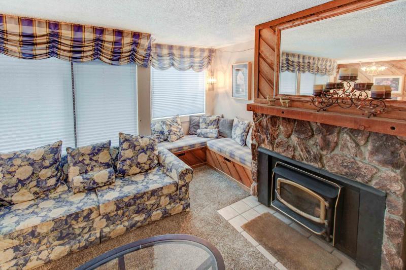 Bigwood #027 - Image 1 - Mammoth Lakes - rentals