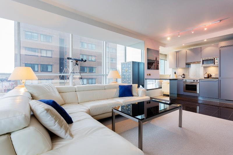 Modern panoramic apartment with gym, Grosvenor Road, Westminster - Image 1 - London - rentals