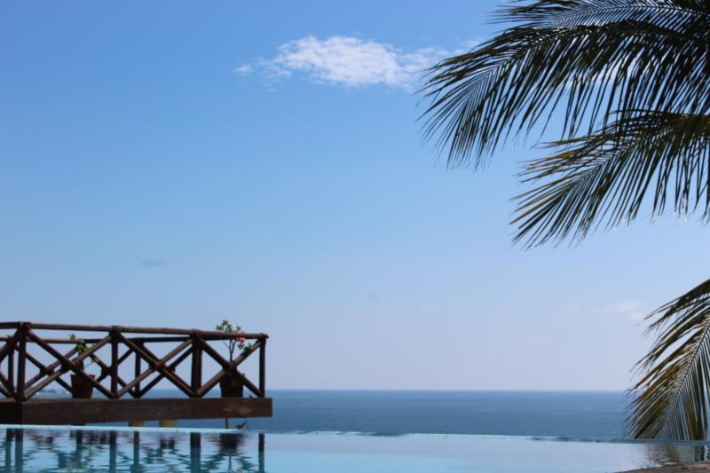 Casa Junto Al Mar- Huge Infinity Pool - Image 1 - Puerto Escondido - rentals