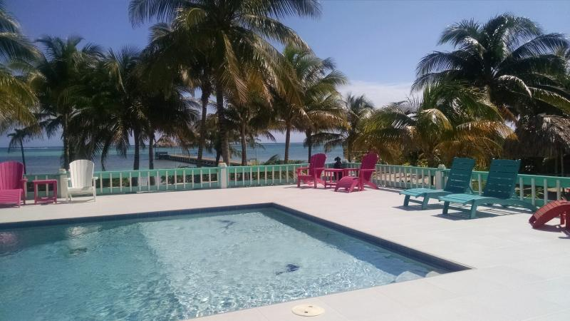 Private pool delights all ages!  Sugar and beach, right on the ocean, reef view with morning sunrise - Blue Dolphin Villa - San Pedro - rentals