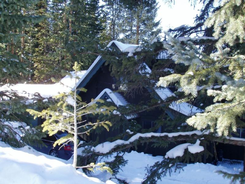 The Locals Call Our Home Forest Haus. - Forest Haus... a True Rocky Mountain Vacation. - Breckenridge - rentals