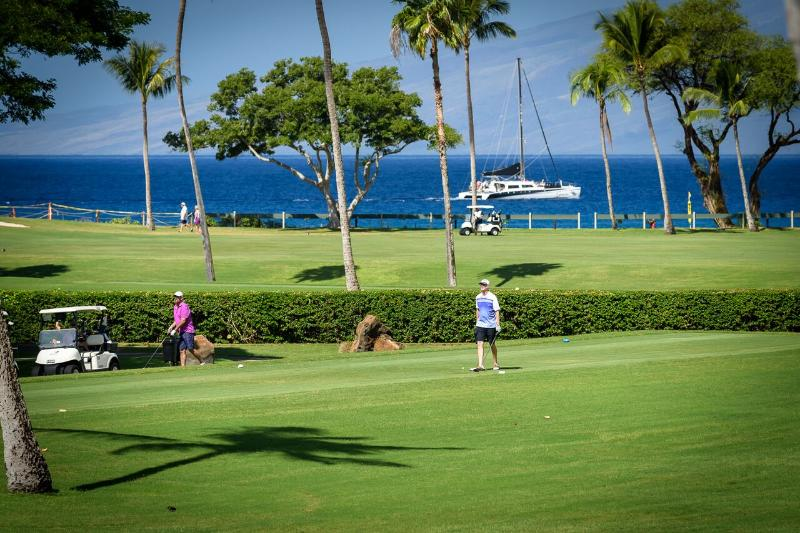 View from the lanai (patio) - Ocean & Golf Course View Studio - Ka'anapali - rentals