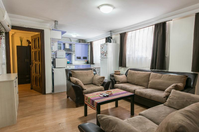 Living Room - A Ruby on the best street of Cihangir - Istanbul - rentals