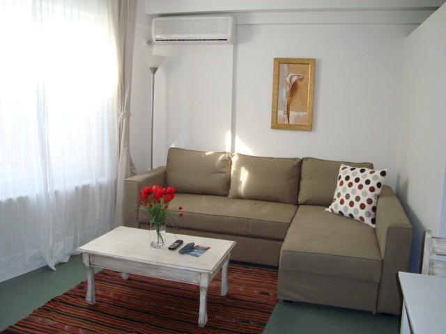 Deluxe Suite Apartment 1 - Image 1 - Istanbul - rentals