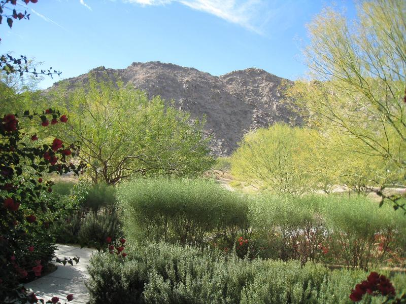Beautiful View from your Bedroom - KING STUDIO - Sleeps 2- PETS OK- Centrally Located - La Quinta - rentals