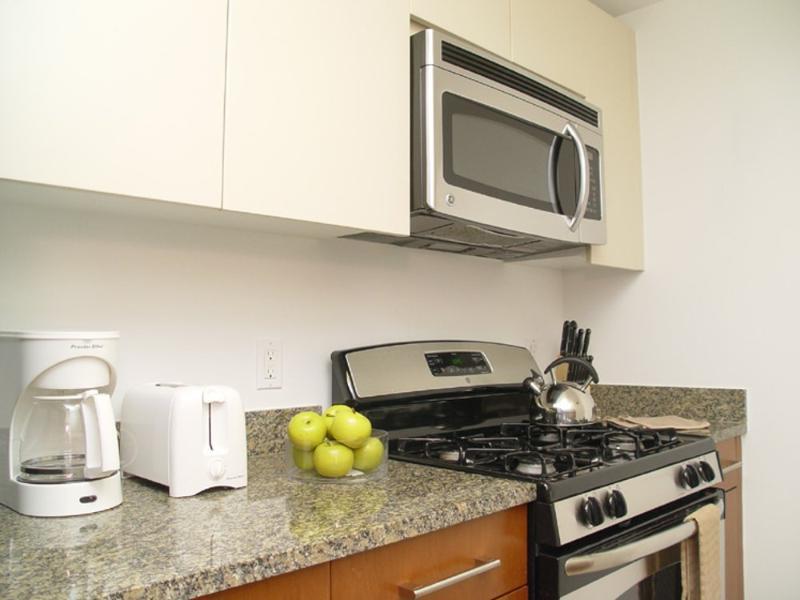 ALLURING 1 BEDROOM 1 BATHROOM FURNISHED APARTMENT - Image 1 - New York City - rentals