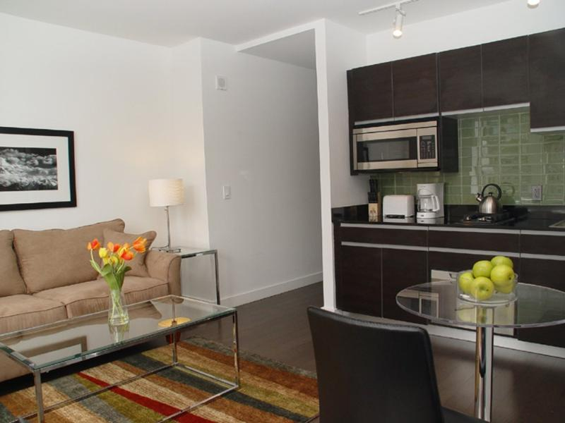 BEAUTIFUL AND MODERN STUDIO APARTMENT - Image 1 - New York City - rentals