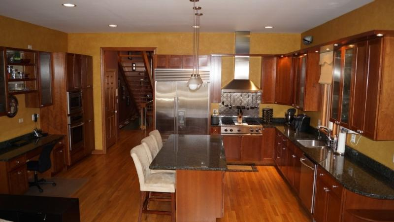 Lincoln Park Custom Single Family Home - Image 1 - Chicago - rentals