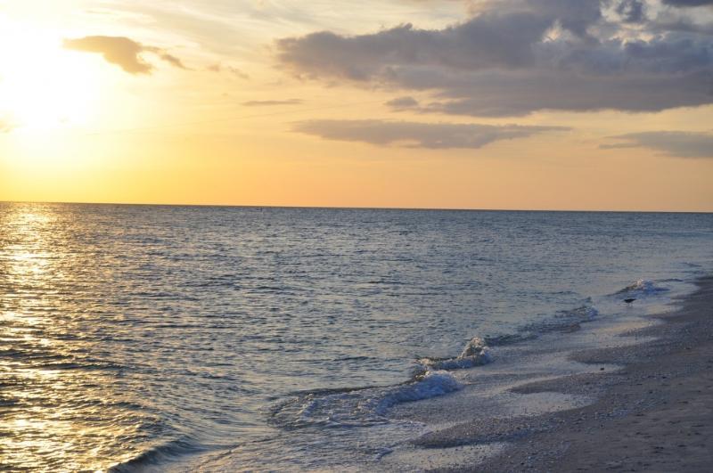 Sanibel Island Sunsets - Sanibel Beach House with walking distance to beach - Sanibel Island - rentals