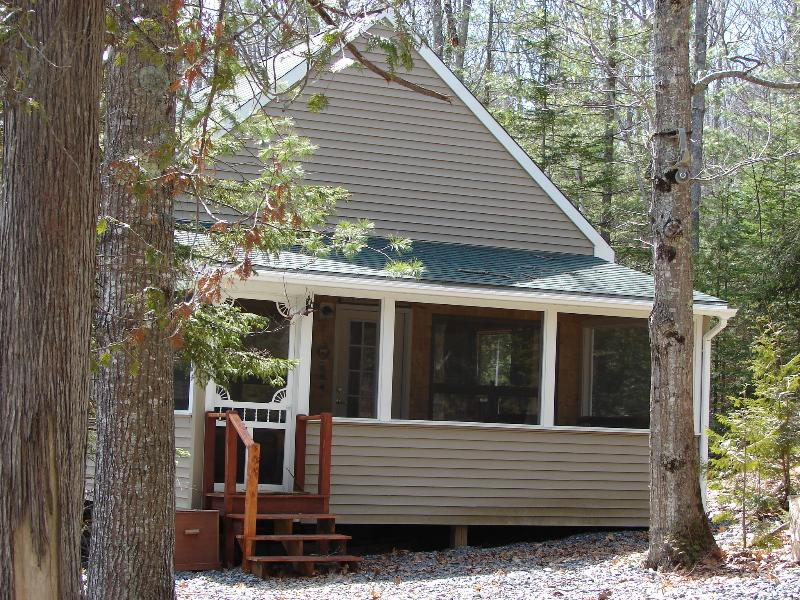 Cabin in the woods by the sea! - Cozy cabin where the mountains meet the sea. - Camden - rentals