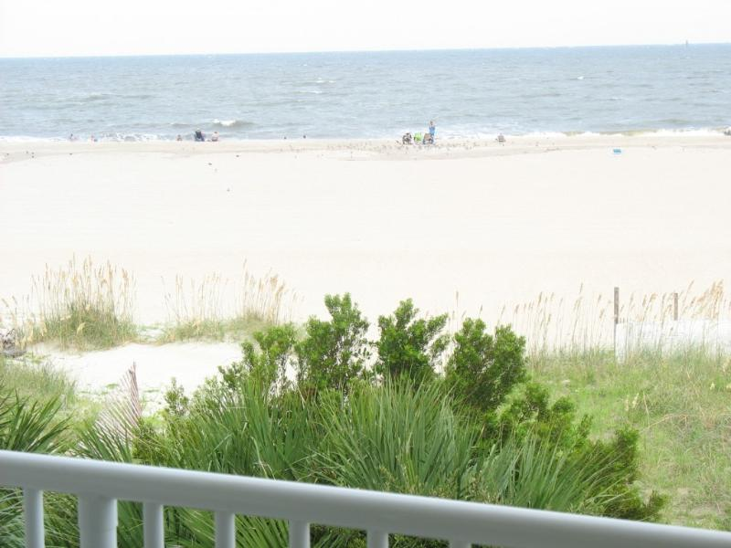 Fabulous Oceanfront Views - Beachfront Luxury 1 BR Condo - 3 Oceanfront Pools - Tybee Island - rentals