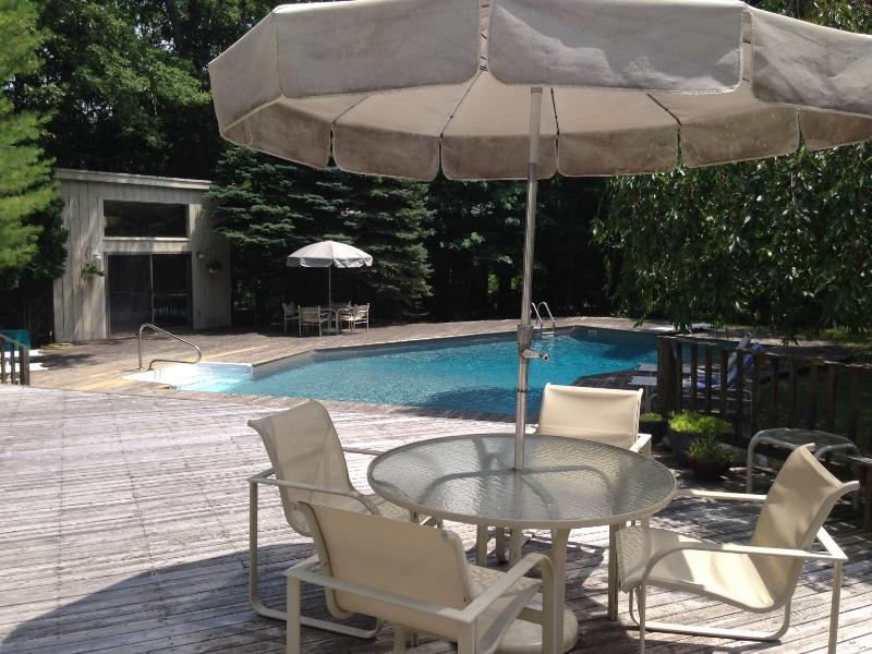 Mini Resort in East Hampton on a private acre - Image 1 - East Hampton - rentals