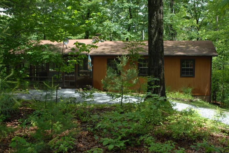Escape To The Woods - Secluded Cozy Mountain Cabin w/Hot Tub*Midweek Special* - Rileyville - rentals