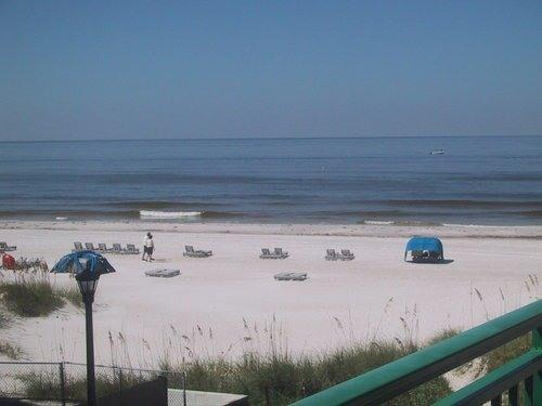 ACTUAL VIEW of the gorgeous beach from our balcony - Perfect Beachfront Condo-July 30 wk now available - Saint Pete Beach - rentals
