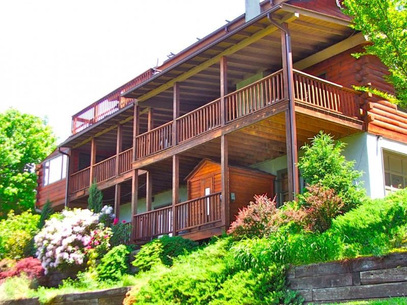 Avondale Ridge - Avondale-lovely views,and near DT Asheville - Asheville - rentals