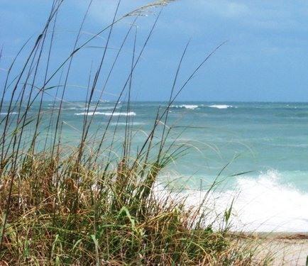 3000' Private Beachfront - Oceanfront Florida Resort-Daytrip to Disney World - Fort Pierce - rentals