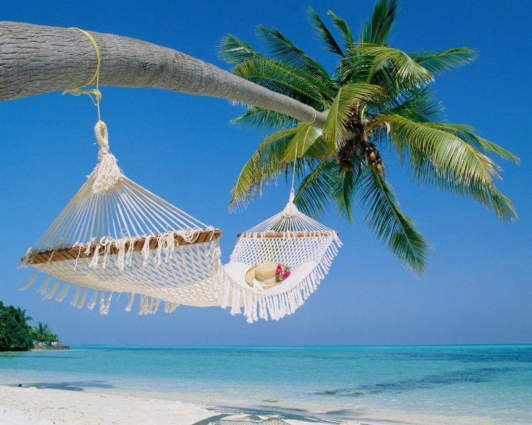 Your Island Beach Awaits You. - Affordable Vacation Condos - PRICE DISCOUNTED! 2BR - Treasure Island - rentals