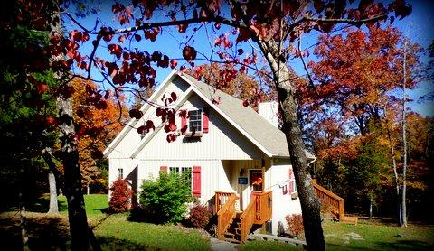 Tall Tree Cottage in Fall - Quaint Cottage in Woods,Lakefront 20min to Branson - Ridgedale - rentals