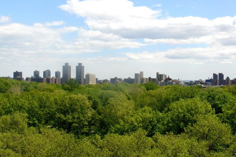 Central Park View from 20 feet of windows!! - Central Park West Gem w VIEWS!! - Manhattan - rentals