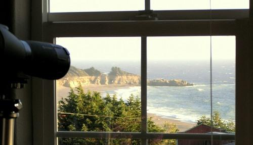 Ocean views from most Seawatch great room windows. - Stunning Gualala Beach View in Charming ArtVillage - Gualala - rentals