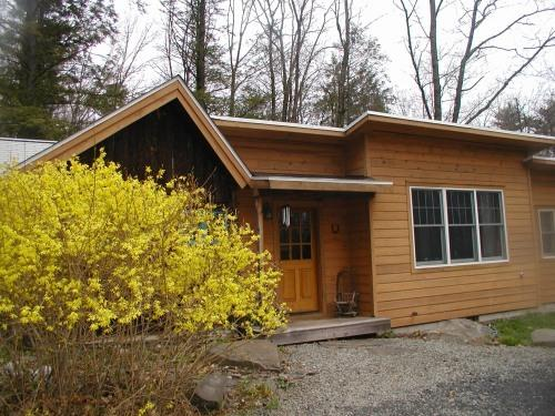 Charming Artist's Cottage with modern amenities - Charming Artist's Cottage - Woodstock - rentals