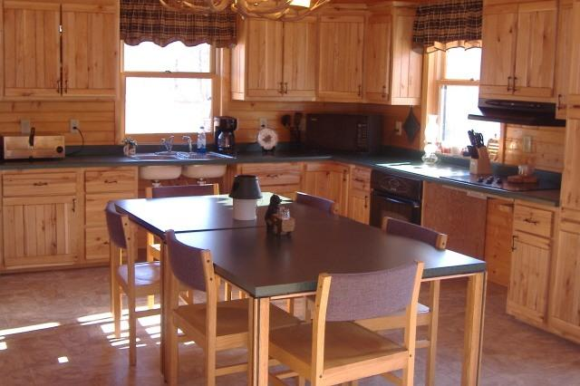 Kitchen - Handicap Accessible Cabin for Rent: - Rhinelander - rentals