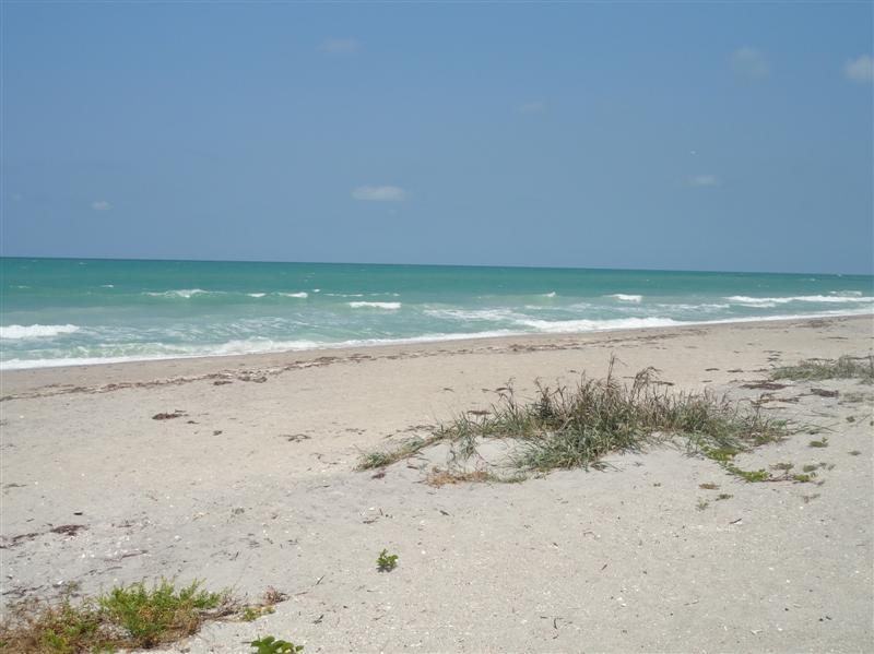 Foot steps away from the beautiful beach! - Beachcomber's delight! - Englewood - rentals