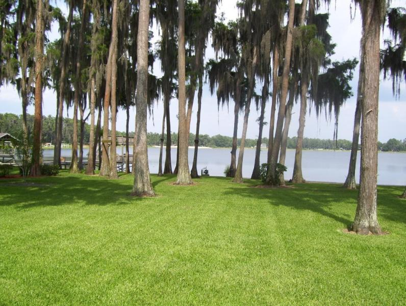 """View From TV/Sitting Room - No Place Like """"Home"""" Welcome To The Lake! - New Port Richey - rentals"""