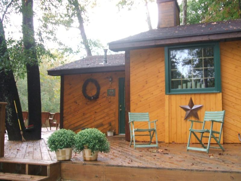 Adorable Cabin - ADORABLE CABIN ON CHESTATEE RIVER - Dahlonega - rentals