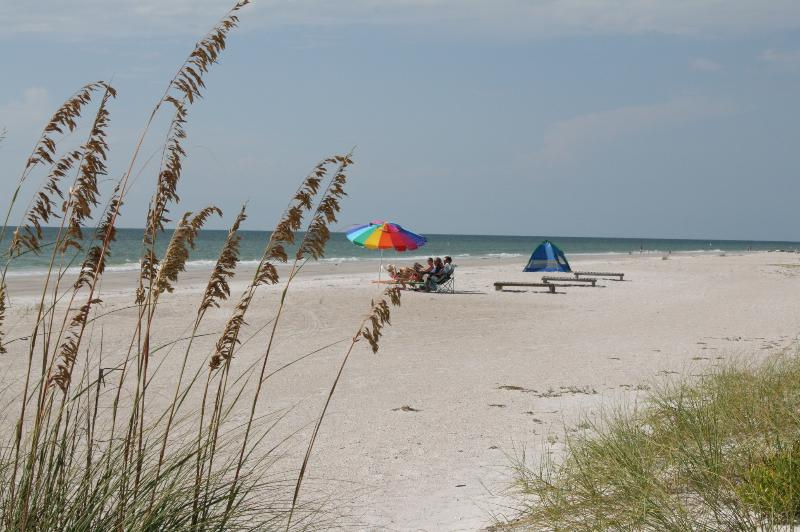 Sandy white beaches of Indian Shores - WATERFRONT Renovated! Openings July/August!!! - Indian Shores - rentals