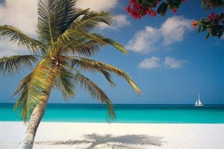 SERENITY - ***SERENITY*** - EAGLE BEACH CONDO - Eagle Beach - rentals
