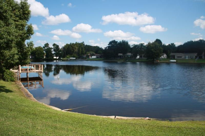 Back Yard Lake View - Tranquil Waterfront Vacation Retreat! - New Port Richey - rentals
