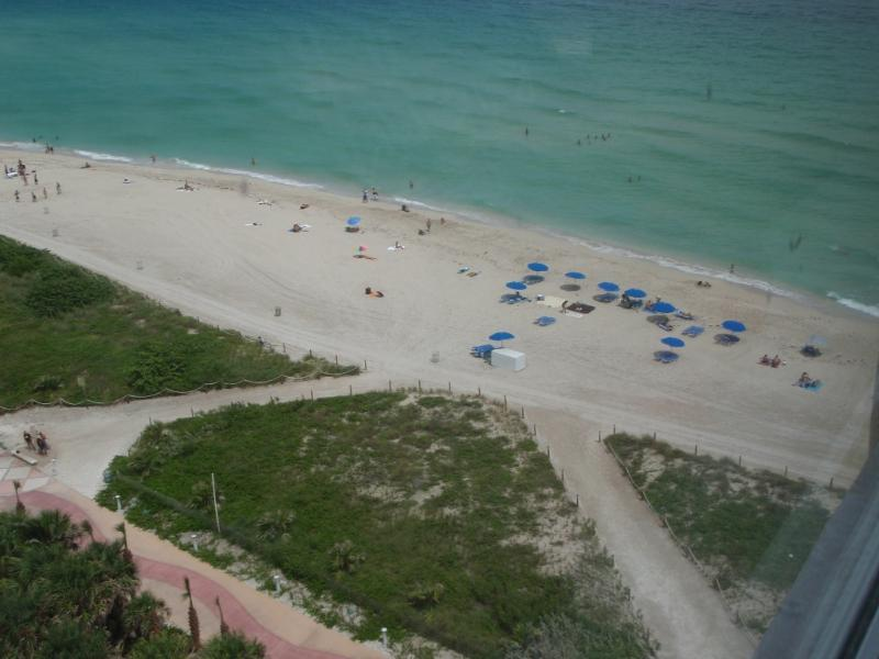 Beach View - Beach Beauty - Miami Beach - rentals