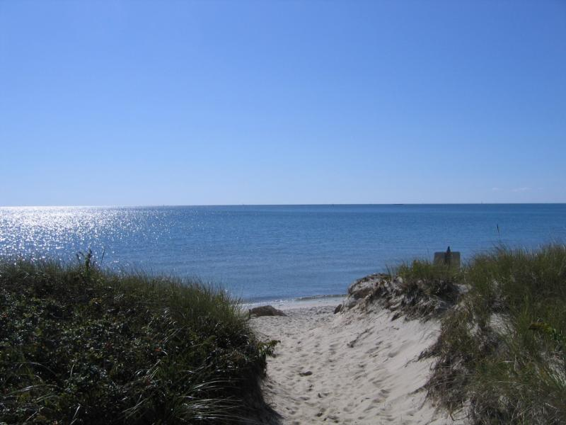 Walk through dunes to beach - Cape Cod  Private Ocean  Beach. - West Dennis - rentals