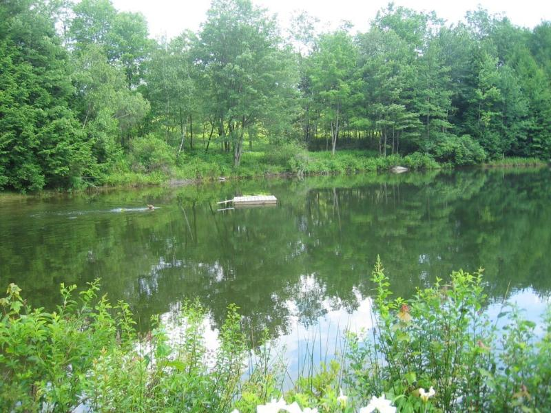 The Pond - GREAT VACATION HOUSE IN UPSTATE NY - Hurleyville - rentals