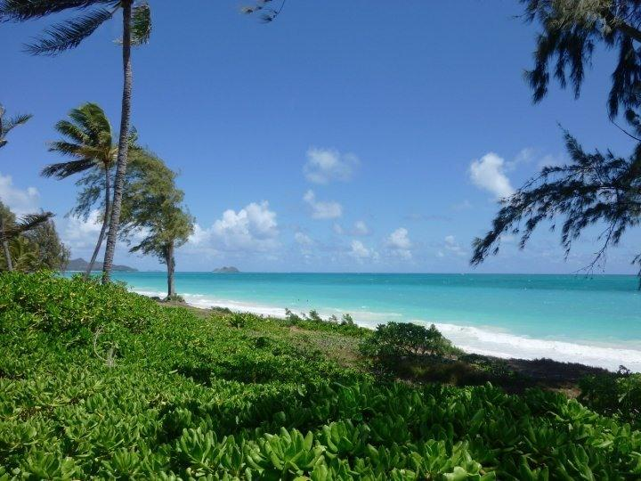View from the Master Bedroom - Waimanalo Beachfront House and Cottage - Waimanalo - rentals