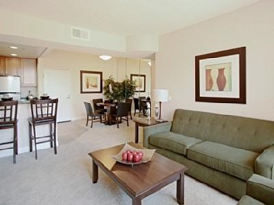 Lake and City View Condo in Downtown Area - Image 1 - Chicago - rentals