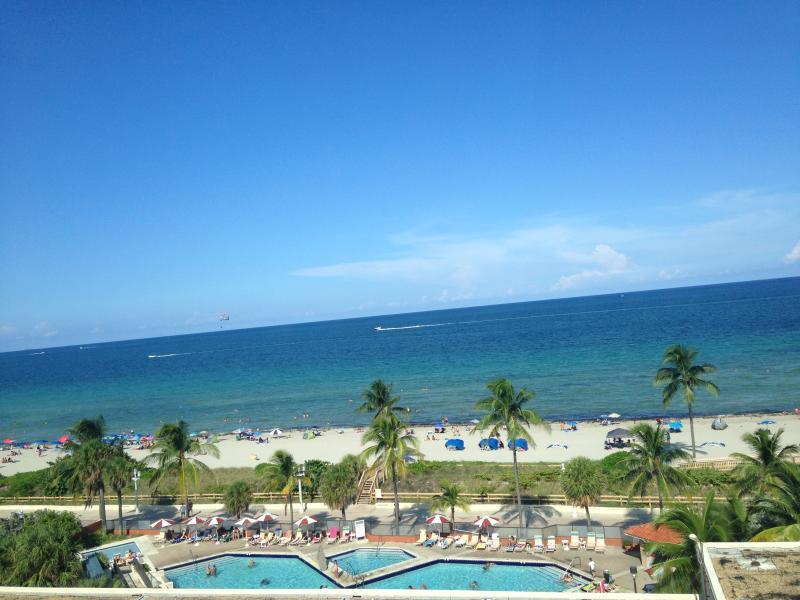 Ocean view from studio window - Beautiful Oceanfront Condo! - Hollywood - rentals