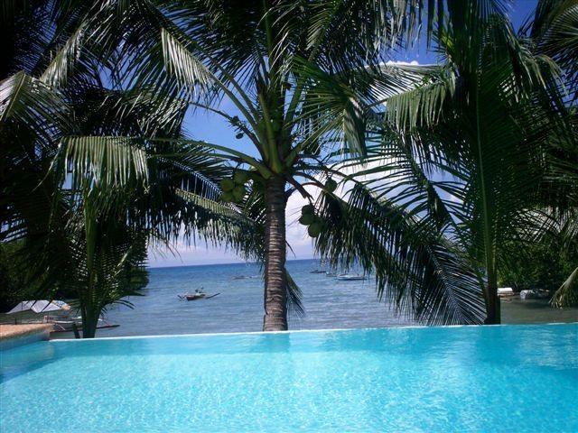 Infinity pool - Luxe beach villa with private pool - Argao - rentals
