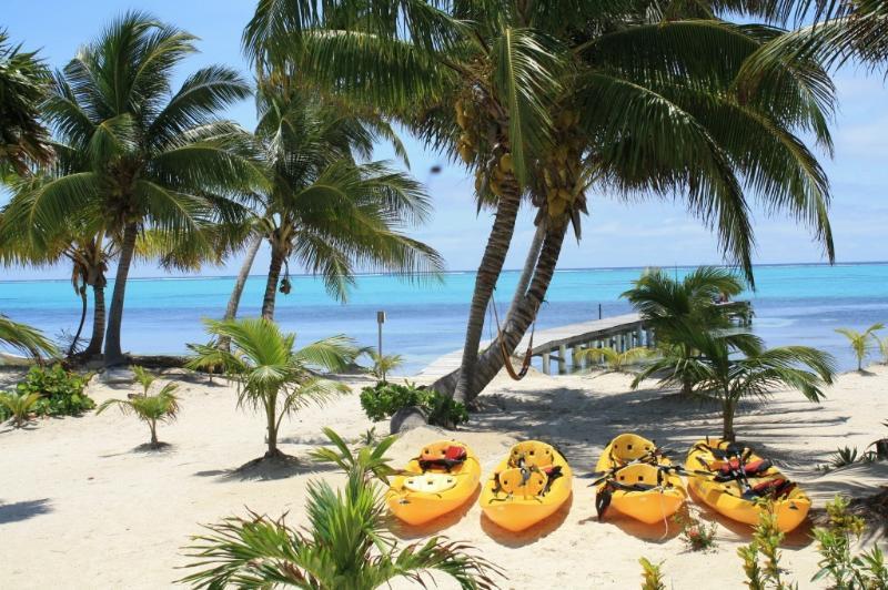 Kayaks and beach - Luxury Beachfront Condominium - San Pedro - rentals