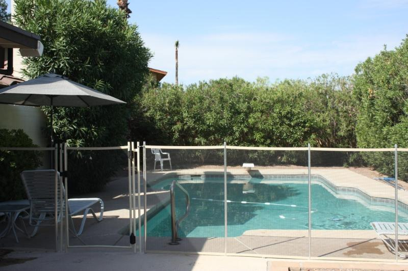 Pool - Gorgeous 3BR/2BA Villa, Huge Heated Pool - Scottsdale - rentals
