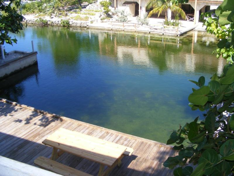 protected dockage / swimming - Seclusion and Privacy  Little Torch , Oceanside - Summerland Key - rentals