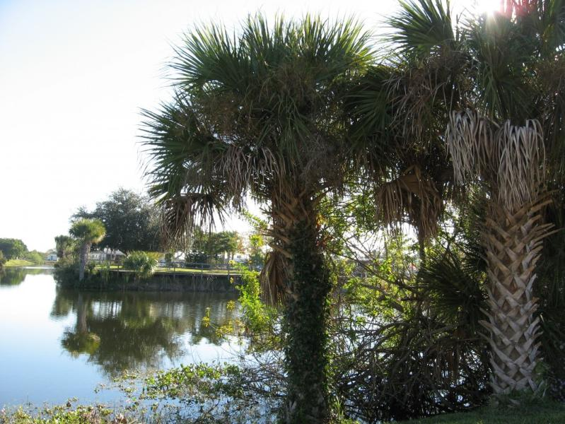 waterview - Englewood Holiday Estates Canal Front - Englewood - rentals