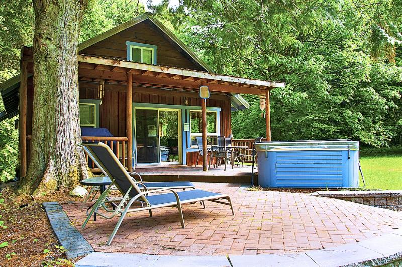 Mysty Mountain Cabin - Secluded Cabin on 5 Riverfront Acres-Sauna/Hot Tub - Skykomish - rentals