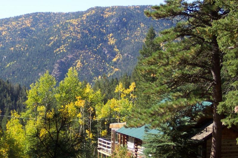 Cather Springs Ranch cabin-call it home! - Pike National Forest Private Mountain Ranch cabin - Colorado Springs - rentals
